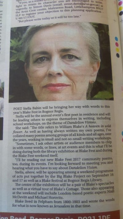 Preview of Dandelion Visions in the local newspaper.