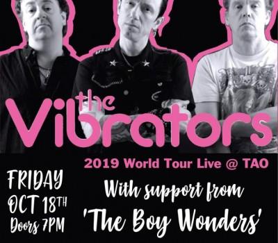 2019 Vibrators Gig
